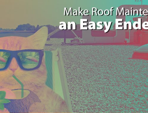 Make Roof Maintenance an Easy Endeavor